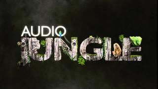 Music - Thrashy Garage Punk | AudioJungle