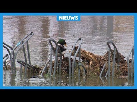 Het water in Nederland staat erg hoog