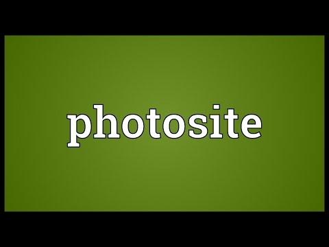 Photosite Meaning
