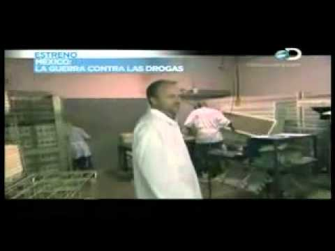 discovery channel latino pavos 2 8 youtube. Black Bedroom Furniture Sets. Home Design Ideas