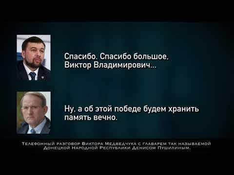 Ймовірна розмова, де Медведчук вітає Пушиліна з Днем перемоги