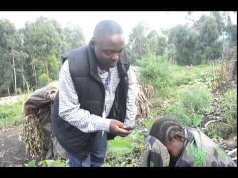 Journalist training field visit Kingi Democratic Republic of Congo North Kivu Province