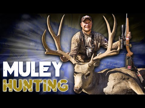 Hunting Mule Deer In Colorado: Ike Eastman Kills A Giant