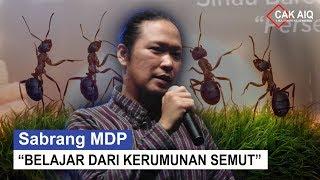 Sabrang MDP : belajar dari kerumunan semut