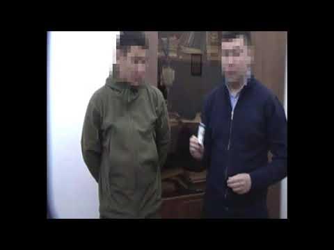 Руководство Кинологического центра КФМ МФ РК подозреваются в коррупции