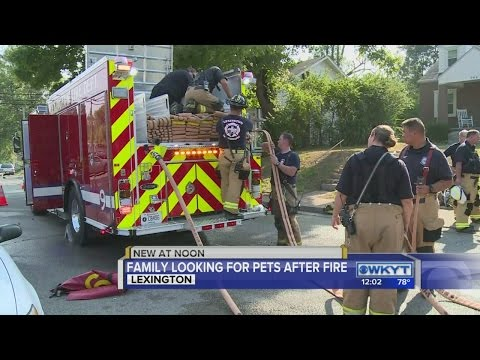 Woman, pets escape burning home in Lexington