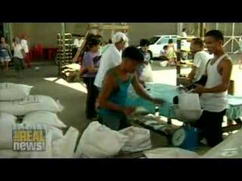 As food crisis spreads, UN forms hunger task force
