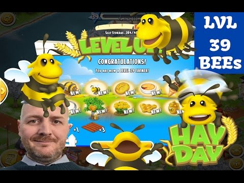 Hay Day - The Bees, Level Up 39, Town Upgrades