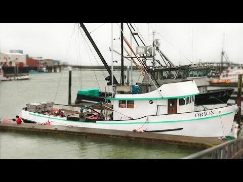 Westport Commercial Crab Fishing // VLOG