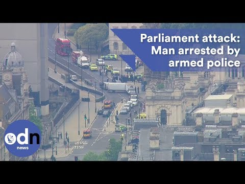 Parliament crash: Man arrested by armed police