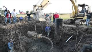 vuclip Farmer unearths woolly mammoth skull, tusks and bones in Lima Township field