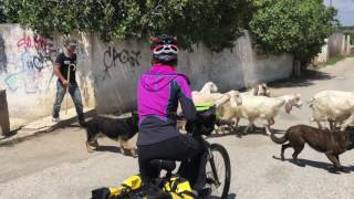 Bicycle tour from Matera and Salento to Lecce. マテーラからサレント...