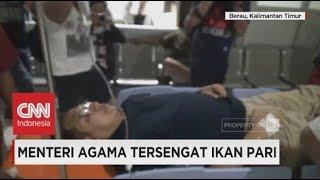 Download Video Menteri Agama Lukman Hakim Tersengat Ikan Pari MP3 3GP MP4