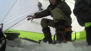 зимняя рыбалка на Енисее! отчет 28.01.2017! 18+ БЕЗ ЦЕНЗУРЫ!