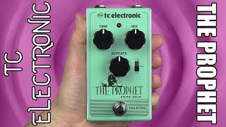 TC Electronic The Prophet Digital Delay Demo & Review - Stompbox Saturday