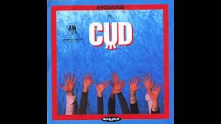 CUD - Beyond Hair
