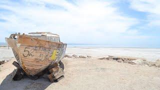 The Renaissance of The Salton Sea
