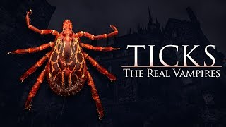 Ticks: The Real Vampires