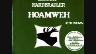 Ausseer Hardbradler-Just another day in da sun am see