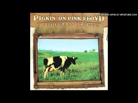 bluegrass pinkfloyd