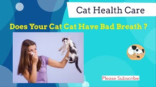 How do to get rid of a cat's bad breathing Bad Cat Breath