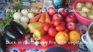 Утка в казане на костре с овощами