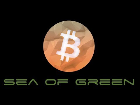 Cryptocurrency Sea of Green as Altcoins and Bitcoin Rise