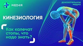 Как плоскостопие влияет на ваш организм. Кинезиология — наука о движении | МЕДiЯ