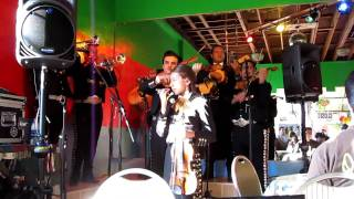 Mariachi Alta California @ El Texate in Santa Monica