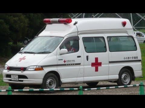 موجة الحر تقتل خمسة أشخاص في اليابان  - نشر قبل 4 ساعة