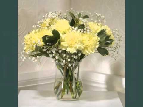 Pretty and lovely flower pictures yellow carnation flower youtube pretty and lovely flower pictures yellow carnation flower mightylinksfo