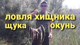 Рыбалка на спиннинг летом на хищника Щука,Окунь.Ловля щуки и окуня летом с лодки на спиннинг.