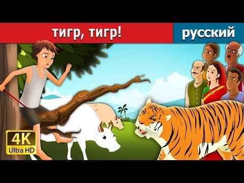 тигр, тигр! | сказки на ночь | русский сказки