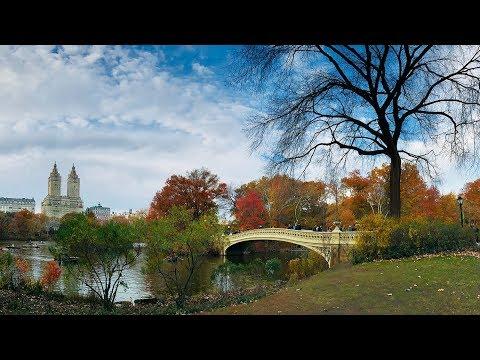 【4K】Walking in Central Park New York