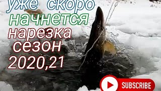 Уже скоро начнётся Нарезка Сезон 2020 21 По твёрдой воде Алтайский край Река Чумыш