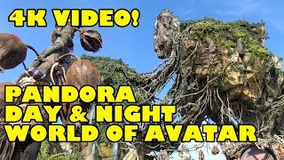 Pandora World of Avatar 4K Area Tour Night and Day Bioluminescent Effects Disney's Animal Kingdom
