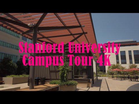Stanford University Campus Tour 4K