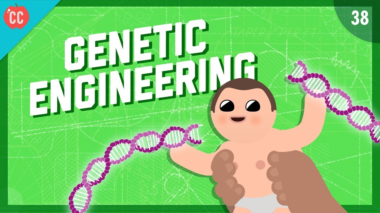 Changing the Blueprints of Life - Genetic Engineering: Crash Course  Engineering #38
