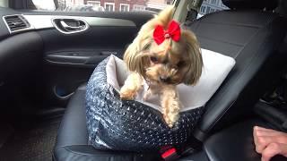 Автокресло для собак в машину