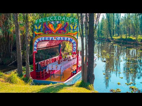 Touring Mexico City's Xochimilco with Ruth Alegria