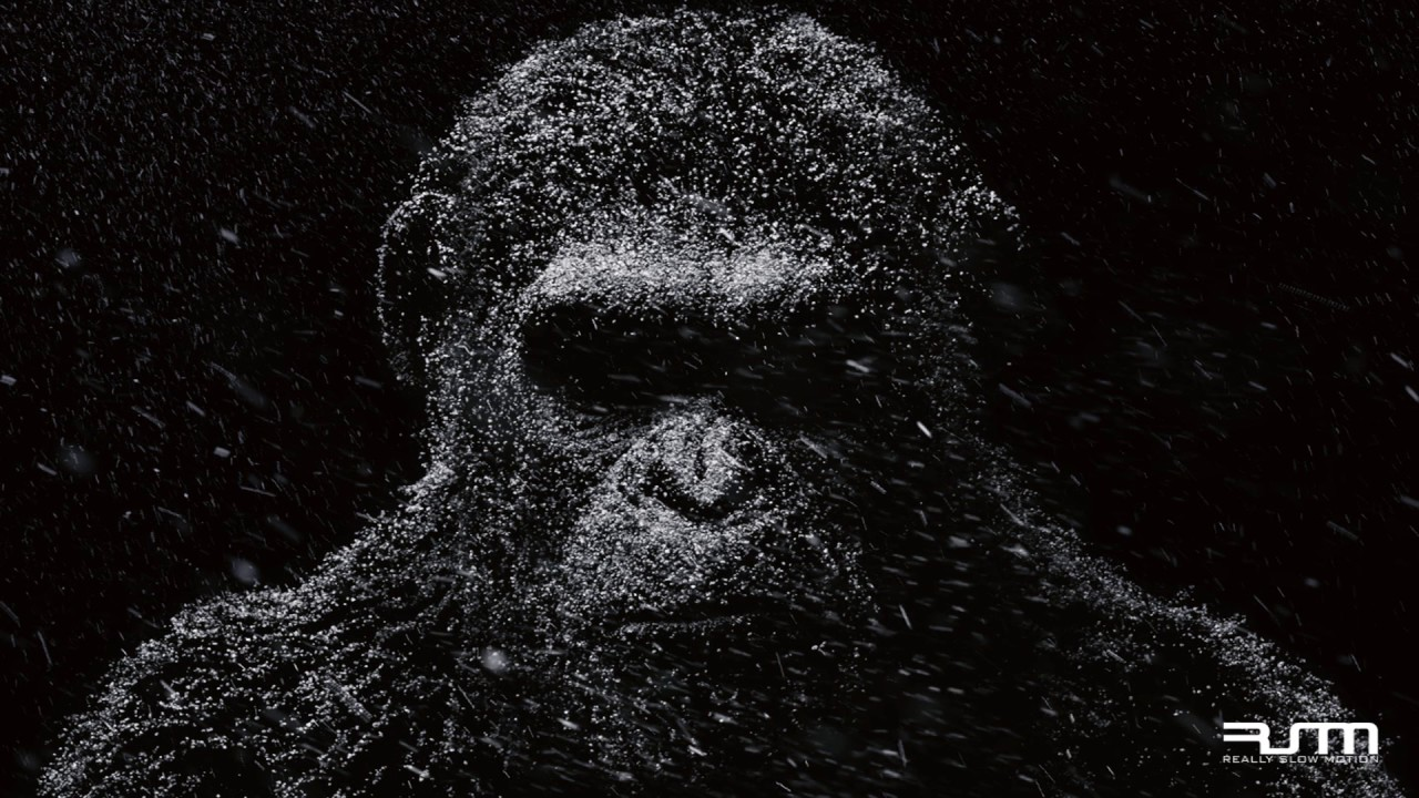 Download Really Slow Motion & Giant Apes - The Furies (WAR FOR THE PLANET OF THE APES - Trailer Music)