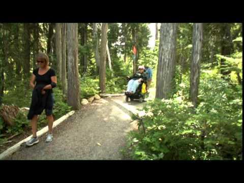 Paradise Meadows at Strathcona Park