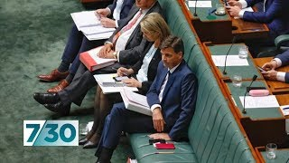 Opposition keeping up the pressure on Angus Taylor over use of doctored documents | 7.30