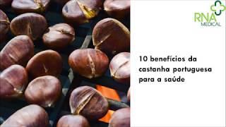 10 benefícios da castanha portuguesa para a saúde