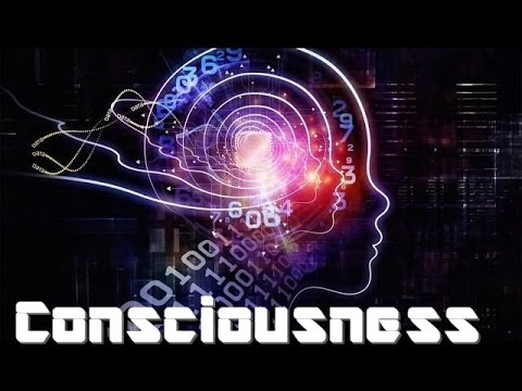 Origins of Consciousness - Prelude & Introduction - The Structure of Consciousness