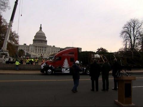 Idaho Christmas Tree Arrives on Capitol Hill