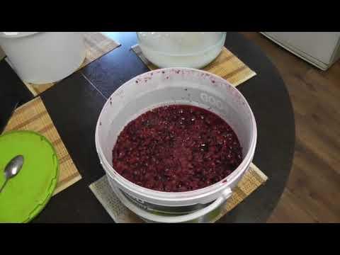 🛑 👉 Вино из чёрной смородины, 25 лет рецепту, проверен временем. Часть первая.