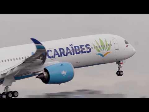 LA350-1000 dans le détail et en vol