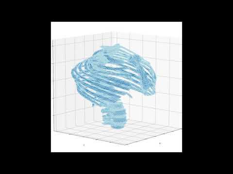 Dynamic Simulation of Rib Cage and Vertebral Column