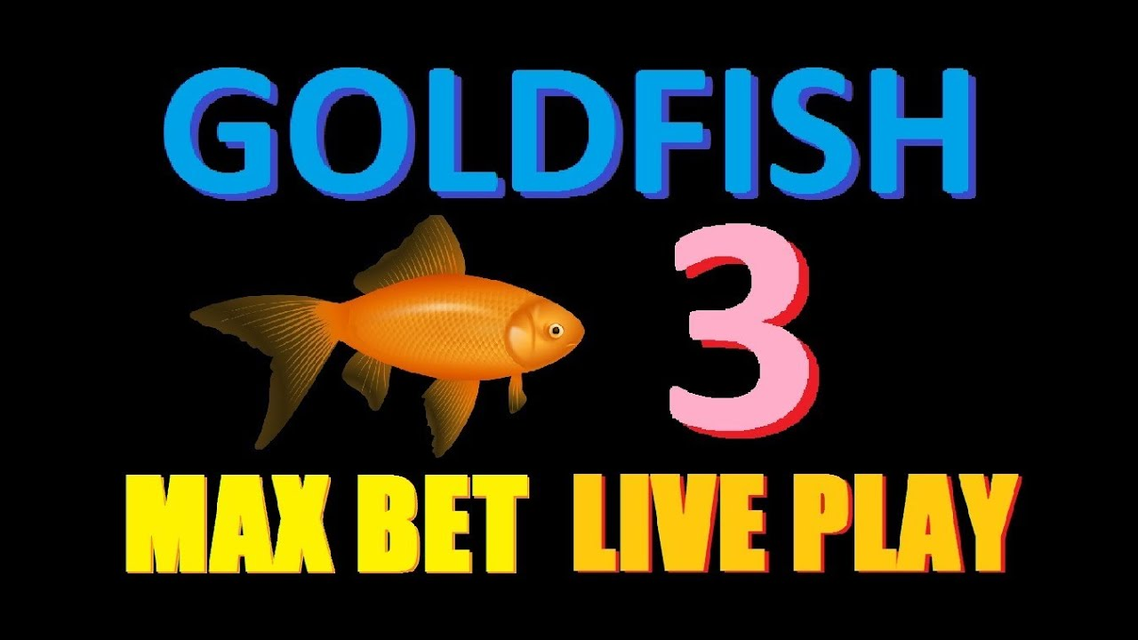 Gold Fish™ Slot Machine Game to Play Free in WMS Gamings Online Casinos